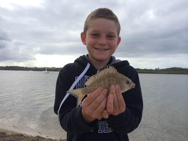 Matthew Craig Chambers Island Bream
