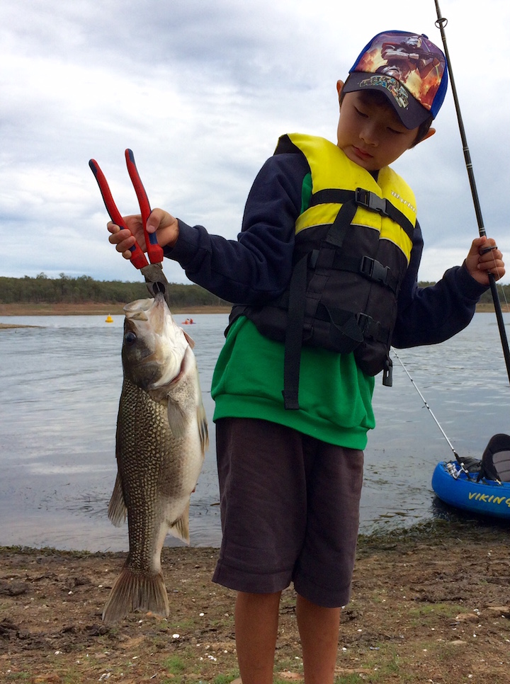 2016 fishing reports sunshine coast fishing reports page 7 for Local fishing forecast