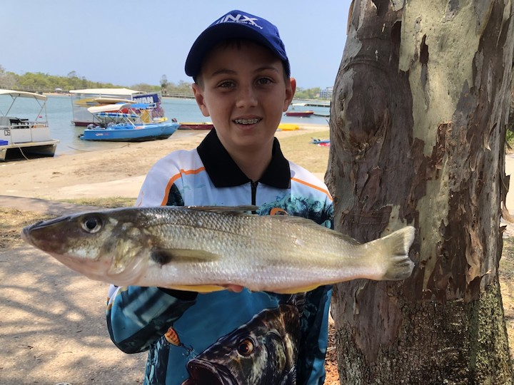 IsaacSmith whiting42cm